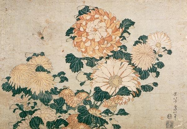 Haiku: la historia de la poesía japonesa